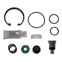 (SPECIAL PRICE) AD-IP PURGE VALVE KIT